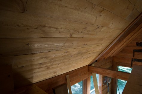 Guest cabin ceiling
