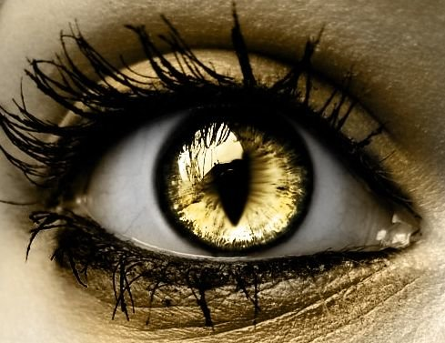 Dragon Skin Girl Wallpaper How To Wear Gold Eye Makeup 7 Ideas And Tutorial Videos