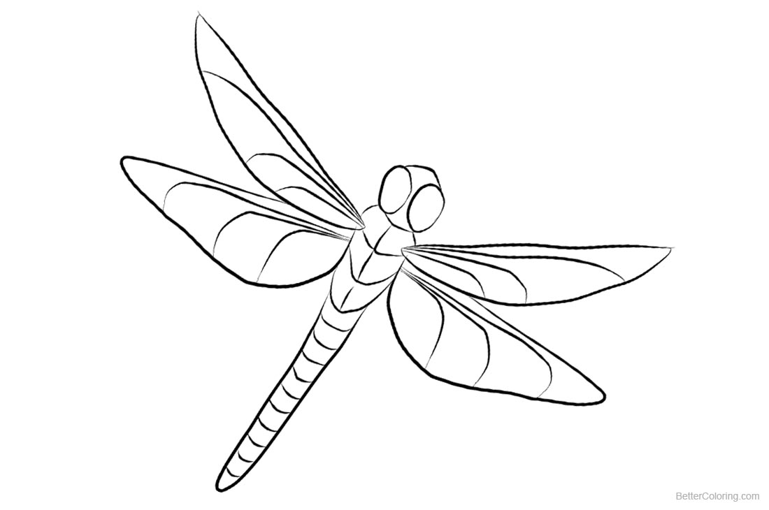 Dragonfly Coloring Pages Clipart Free Printable Coloring