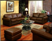 Chocolate Brown Living Room Ideas - Bestsciaticatreatments.com