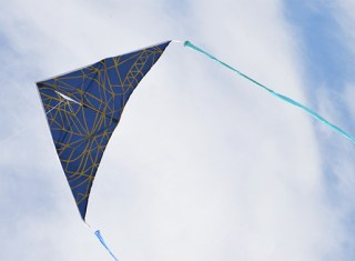 Haptic-Lab-Delta-Navy-Kite