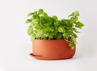 Herb-Pots-by-Anderssen-Voll-for-Mjolk-Large