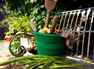 collapsible_bucket_gardening