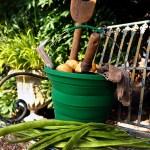 collapsible_bucket_gardening