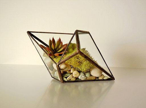 Geometric Shape Terrarium