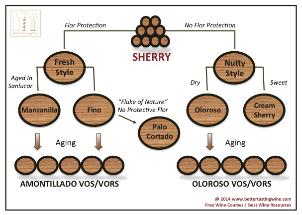 Sherry 12 Most Commonly Asked Questions