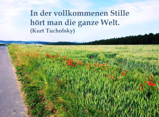 Sommerpause_Mohn_mit Text