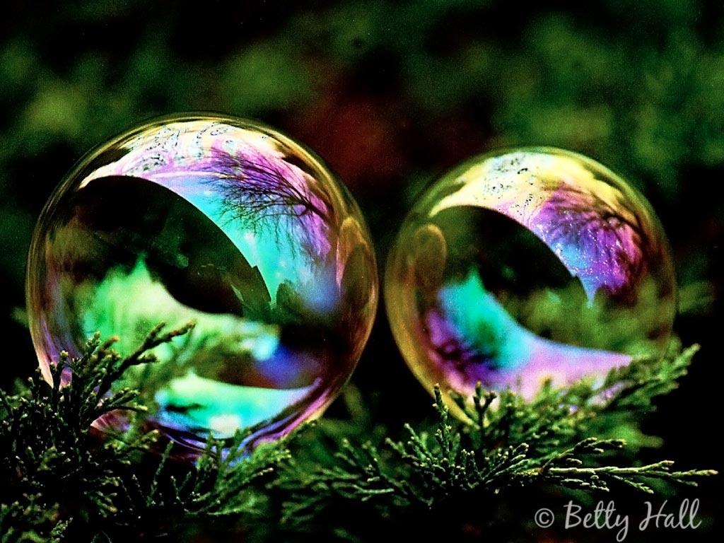 Wallpaper Fall Weather Bubbles Betty Hall Photography