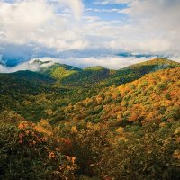 The Blue Ridge Parkway: America's Favorite Drive