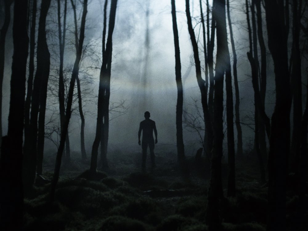 Sad Boy And Girl Full Hd Wallpaper 10 Great Forest Horror Films Bfi