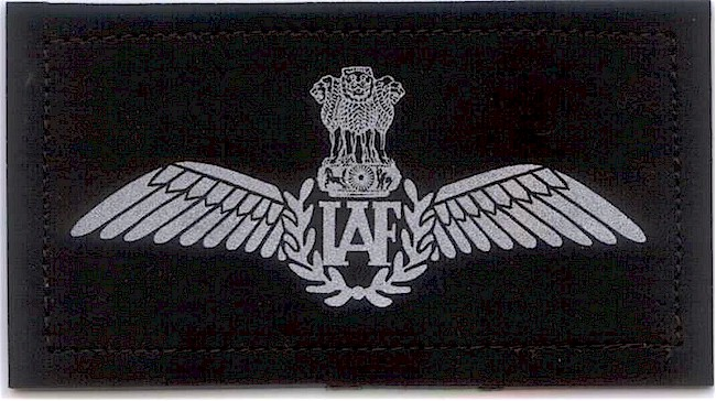 Indian Air Force pilot wings sb Pinterest Indian air force - air force officer sample resume