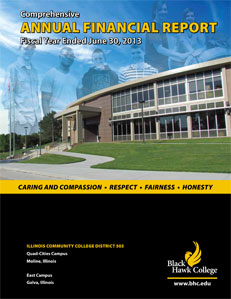 financial report cover photo 2013