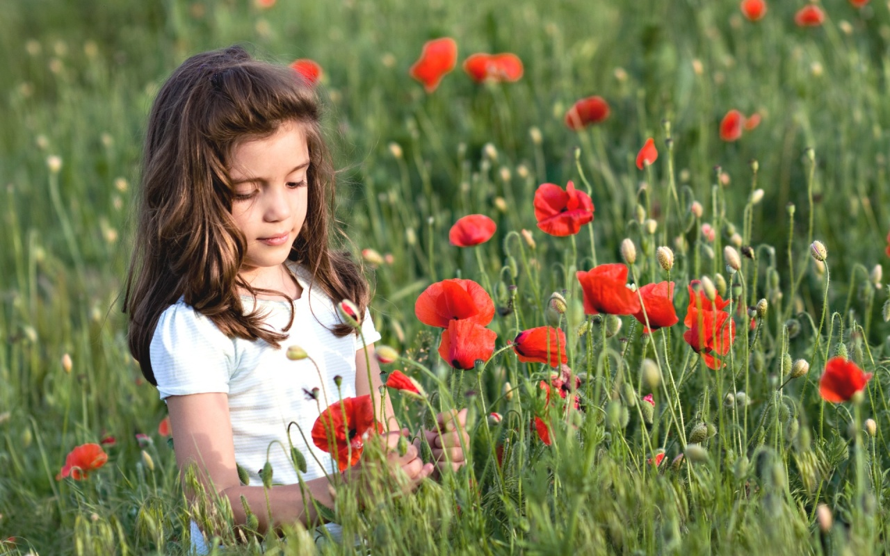 Cute Stylish Child Girl Wallpaper Cute Girl In Poppy Flower Field Wallpapers 1280x800 355273
