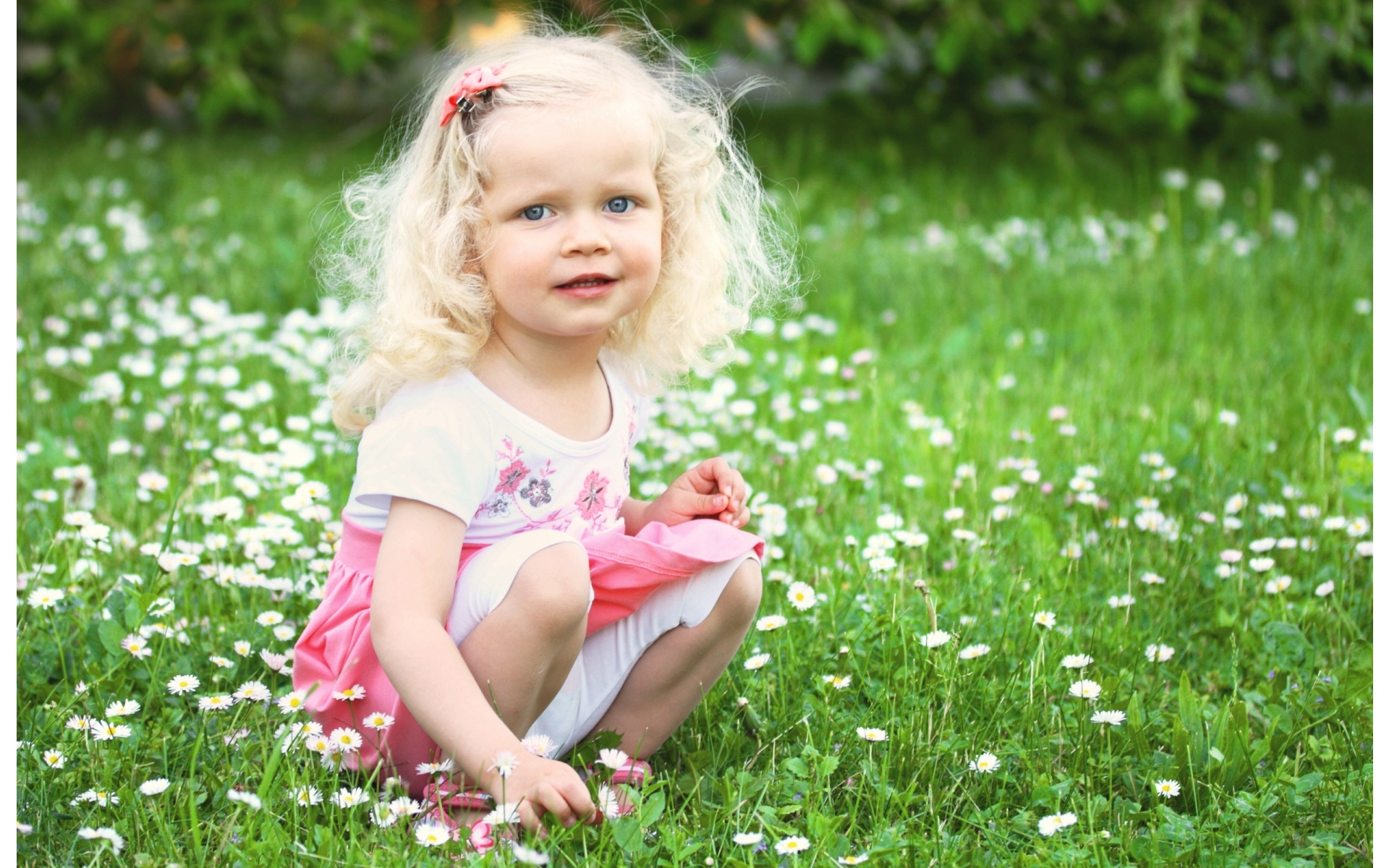 Girl Wallpaper Download Hd Little Girl Is Sitting On Green Meadow Wallpapers