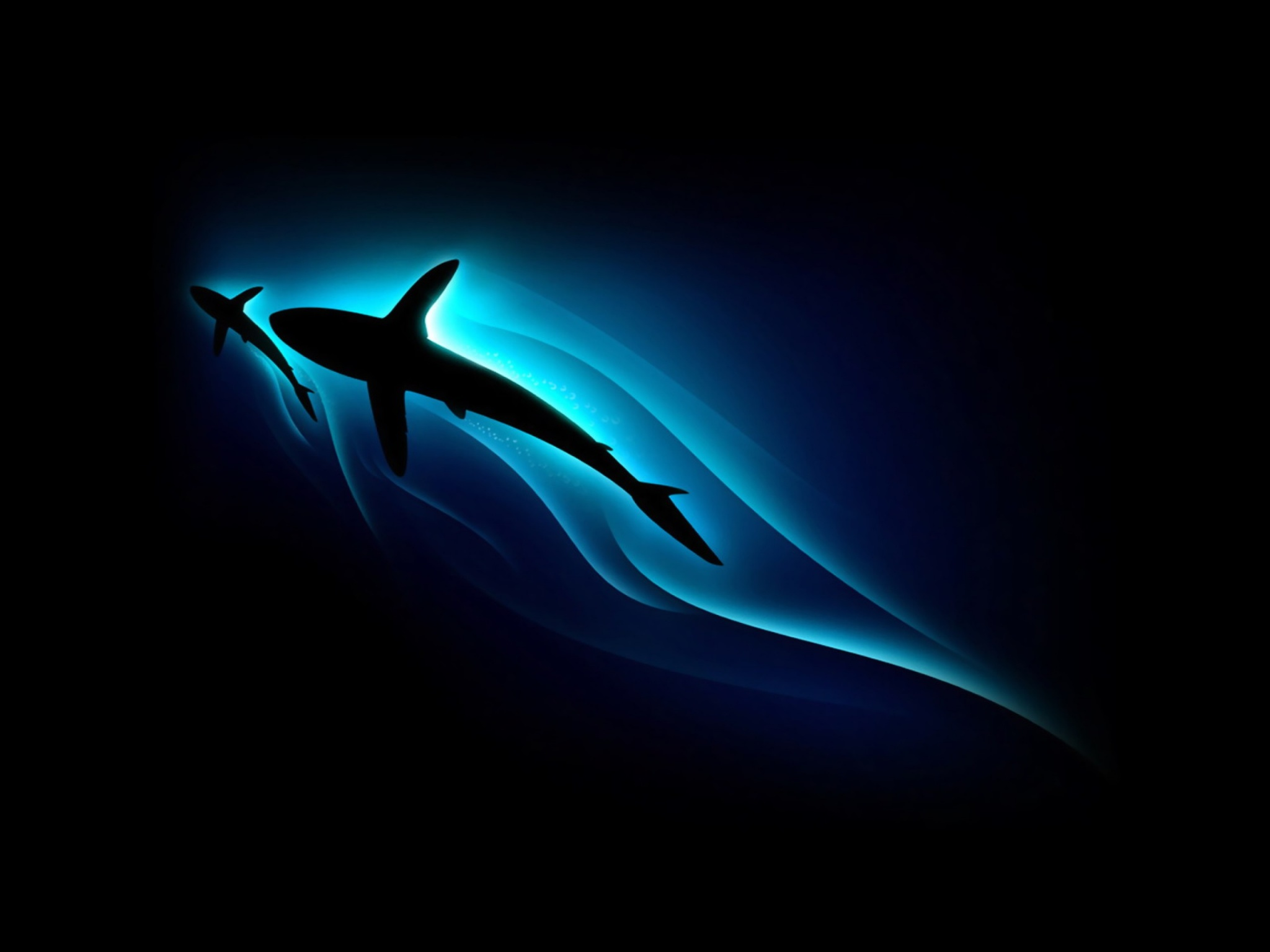 Wallpaper Full Hd Abstract Shark Abstract Wallpapers 2048x1536 173669