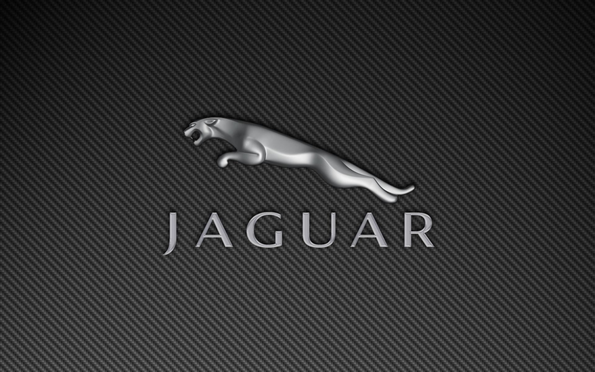 3d Wallpapers In Hd Download Jaguar Logo Wallpapers 1920x1200 741939