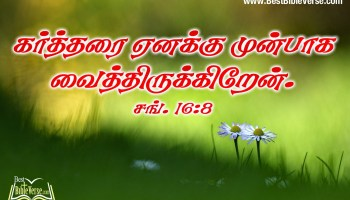 Jesus Christ Wallpaper With Bible Verse In Kannada