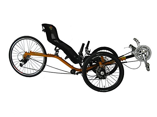 folding 2 seater adult trike