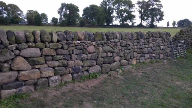 Dry Stone Walling - 01