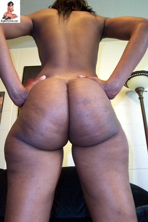 Hot big booty hoes nude seems