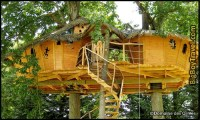 Best Treehouse Hotels In The World: Top 10