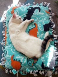 15 No Sew DIY Pet Beds For Your Best Friend
