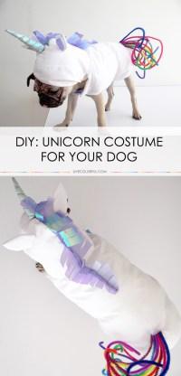 How to Make a Unicorn Costume for Your Dog - BigDIYIdeas.com