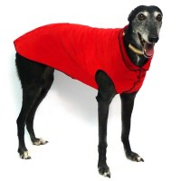 Big and Small Dog Boutique - Big Dog Clothes For Your ...