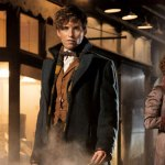Harry Potter Spin-Off Fantastic Beasts and Where to Find Them To Include Gay Rights Parallels