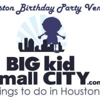 Birthday Party Venues in Houston - Where to have your Kid's Next Birthday Party!