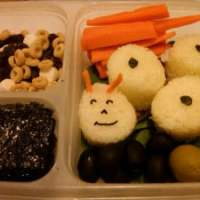 School Lunch Box Tips, Tools and Ideas!