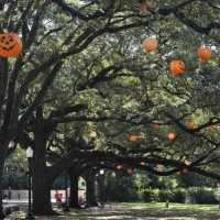 Things to do in Houston, with kids, for Fall 2016! Houston Events for September 6 - October 31, 2016