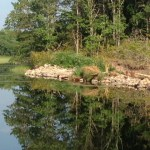 Rock Dam before bog removal