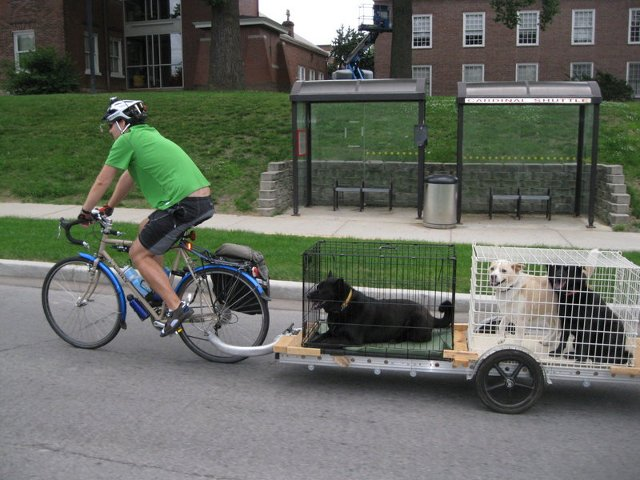 Heavy Duty Bicycle Cargo Trailers Bikes At Work