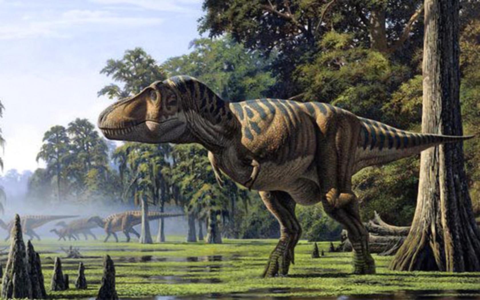 2 Monitor Wallpaper Hd Bilder Dinosaurier Urzeit