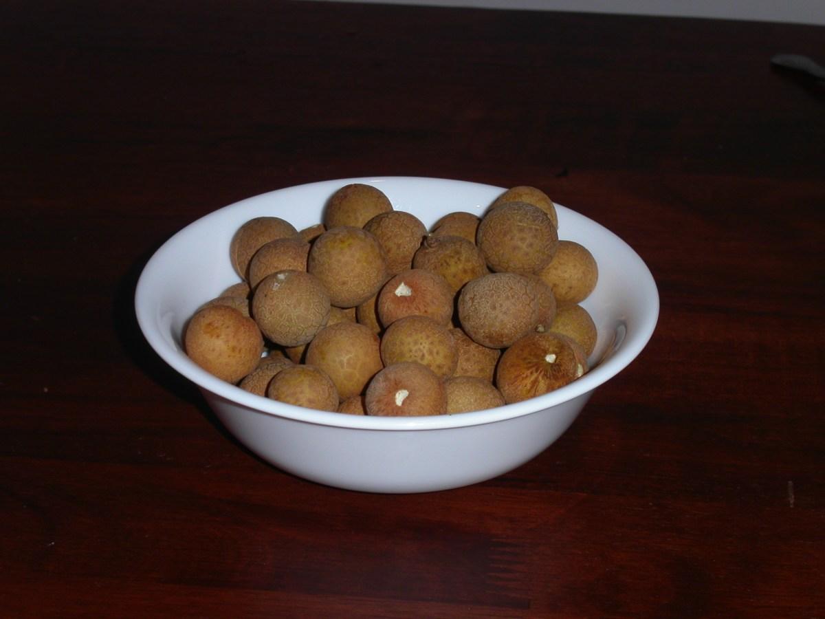 Strange Fruit, pt 2: Mata Kuching