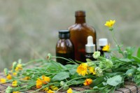 Calendula flower essential oil and tincture