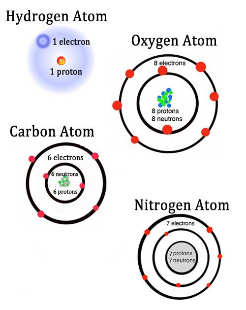 BIL 106 - Lecture 2 - molecule vs atom