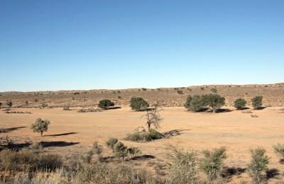 BioEcoGeo_Kgalagadi park