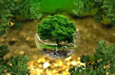 BioEcoGeo_salvaguardia_ambiente