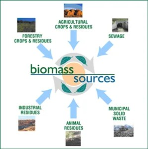 biomass_feedstock