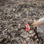 Solid Waste Management – India's Burning Issue