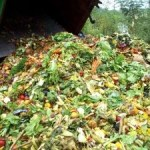 Food Waste Management in USA