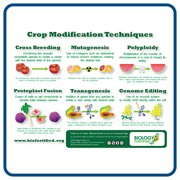 Infographic: Crop Modification Techniques