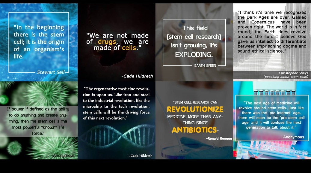 Best Stem Cell Quotes of 2015