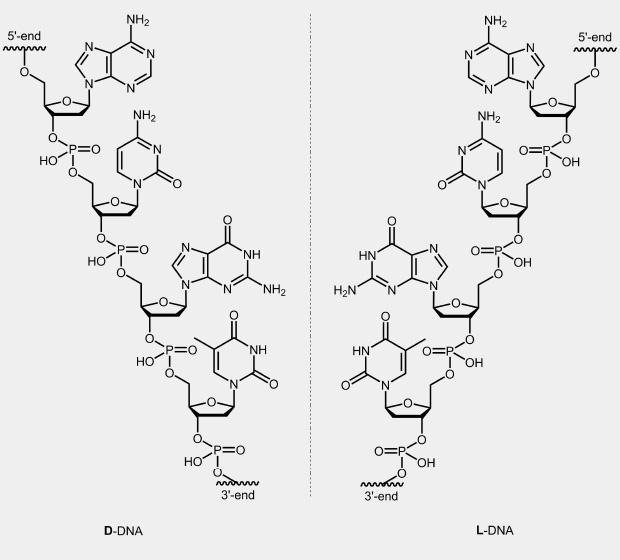 biomersnet L-DNA - biomersnet Oligonucleotides - p-l form