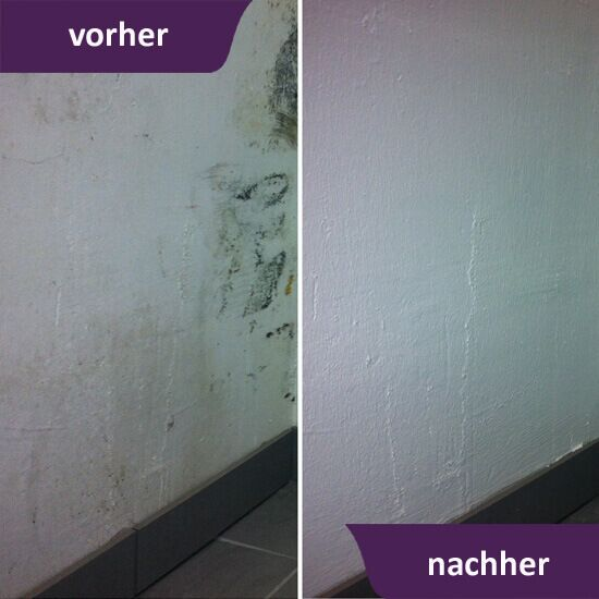 MycoSolan Innenfarbe gegen Schimmel - TÜV zertifiziert - ausenfarbe gegen innenfarbe