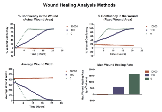 Performance of a Label-Free Image-Based 2D Scratch Wound Healing