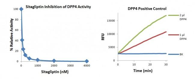 DPP4 Inhibitor Screening Kit (Fluorometric) K780 BioVision, Inc