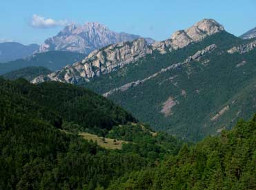 The Natural Park of Cadí in the Pyrenees of Catalonia